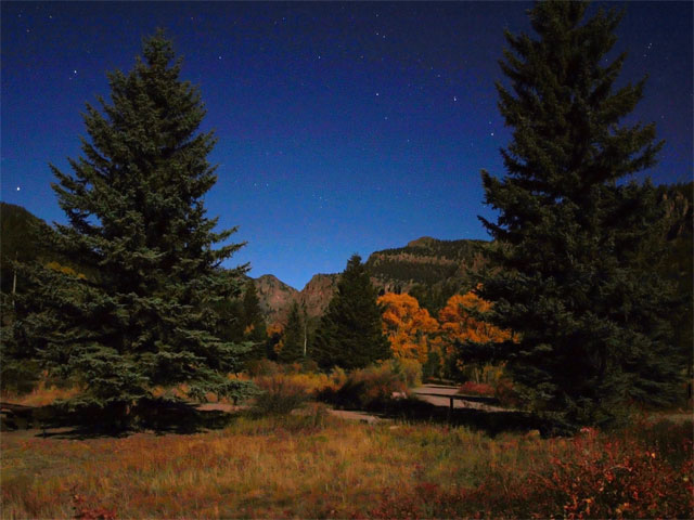 Campground near Creede