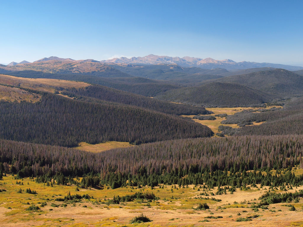 Medicine Bow range over Chapin Creek valley
